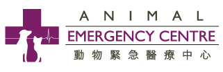 Animal Emergency - Animal Emergency Centre in Hong Kong
